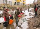 Evakuierungsfischen Mühlgraben_74