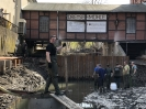 Fischrettung Mühle vorm Damm
