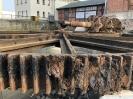 Fischrettung Mühle vorm Damm_50
