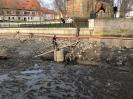 Fischrettung Mühle vorm Damm_52