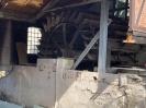 Fischrettung Mühle vorm Damm_54